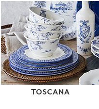 Toscana blue and white dinnerware.
